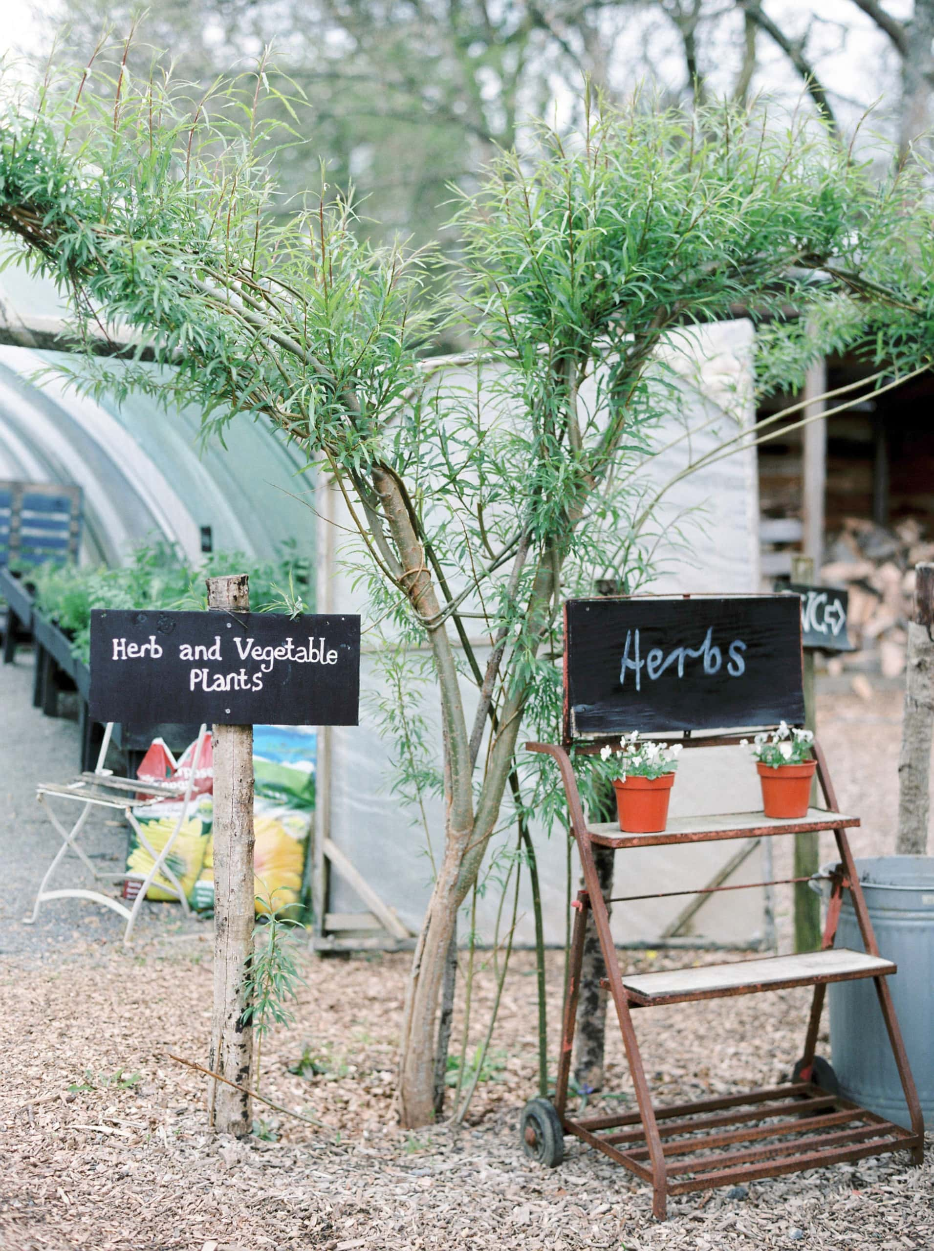 Greenhouse with herb sign