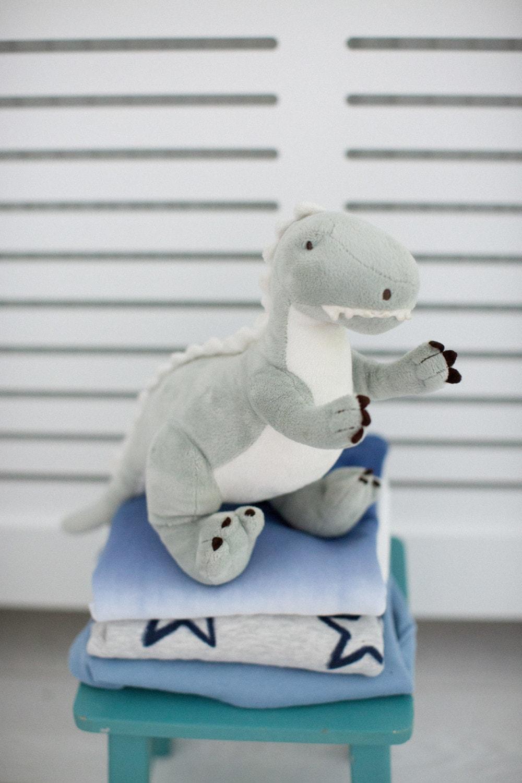 dinosaur teddy on green stall