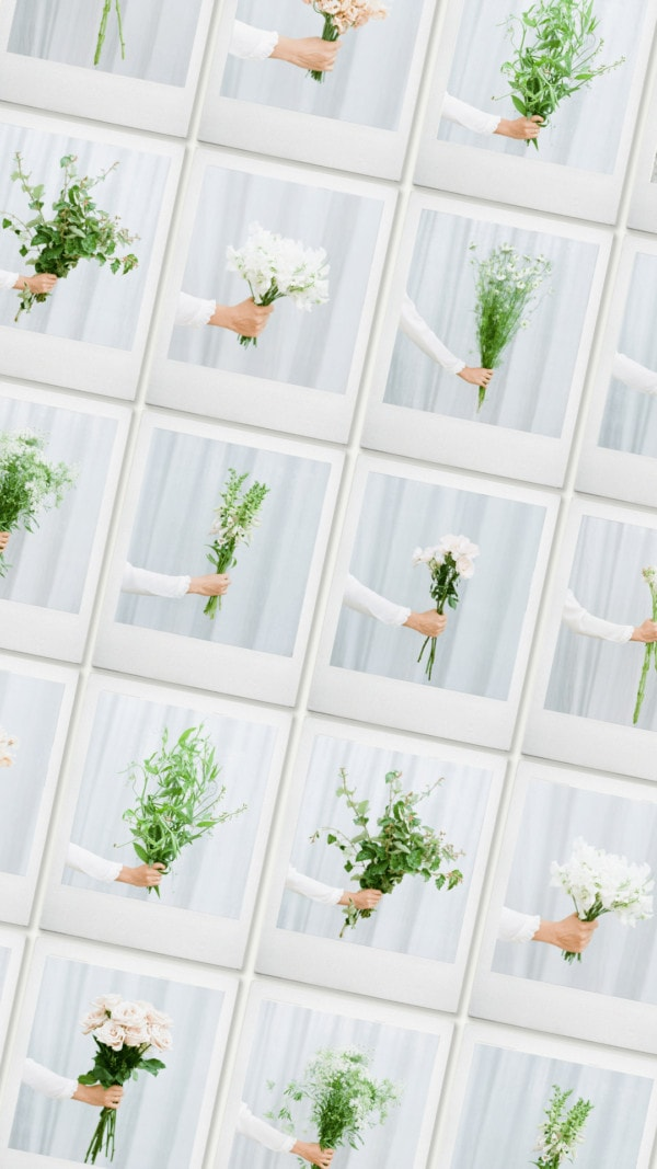 Flowers on film stock photography