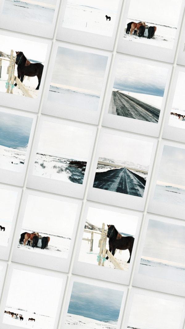Iceland film stock photography 01