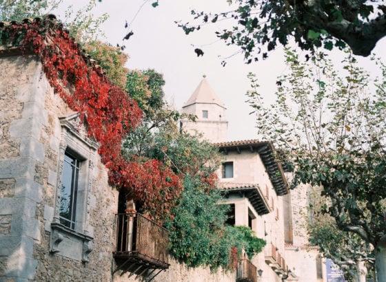 Autumn leaves in Spain