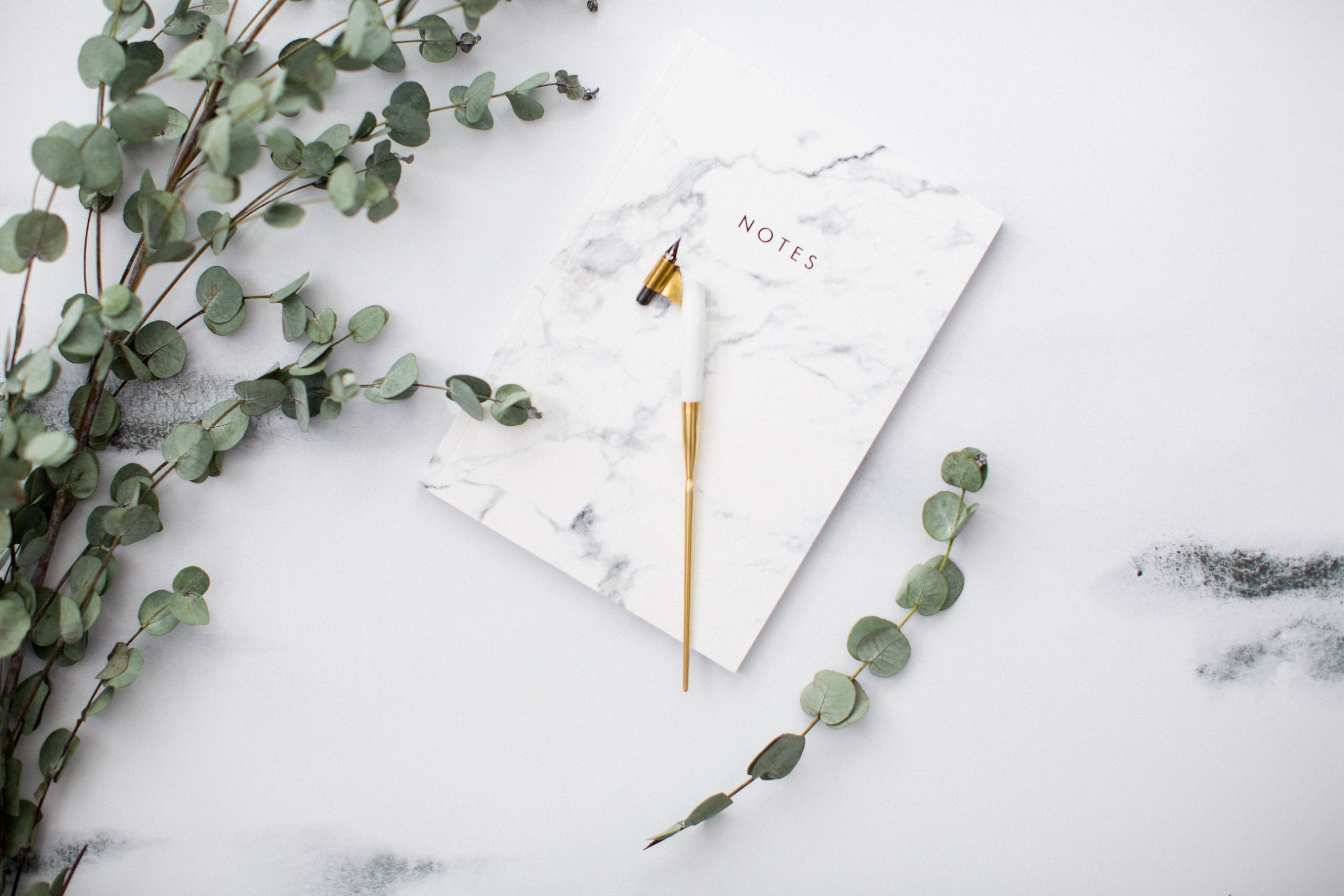 notebook with eucalyptus and pen