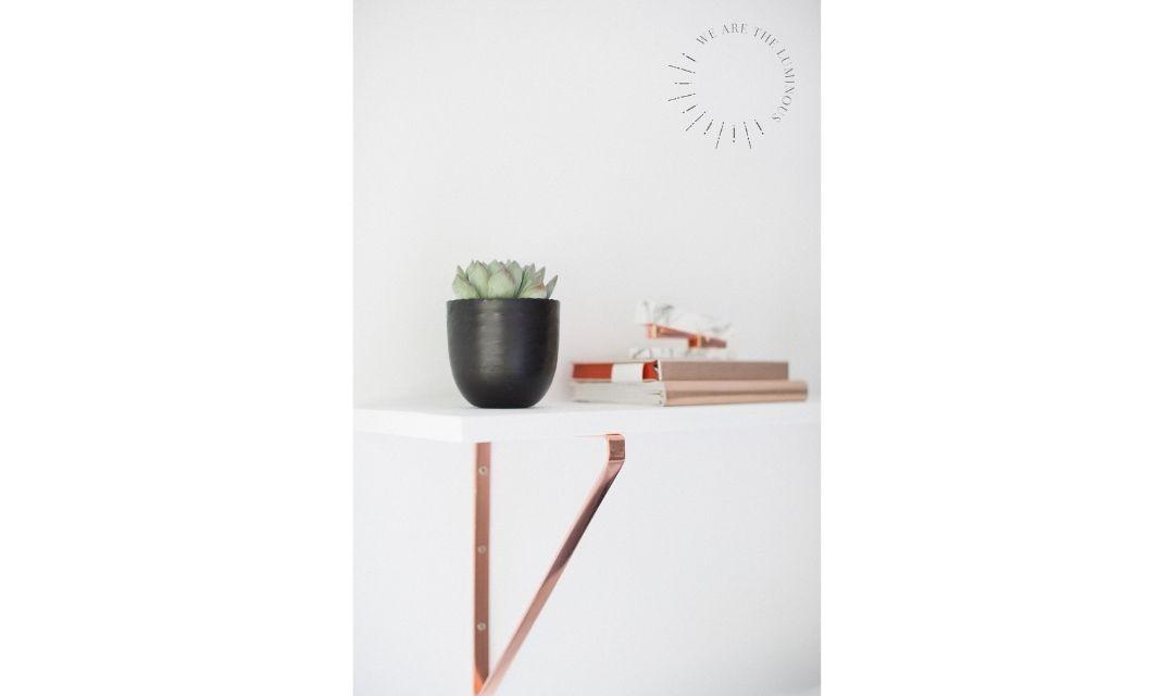 succulent in pot in office