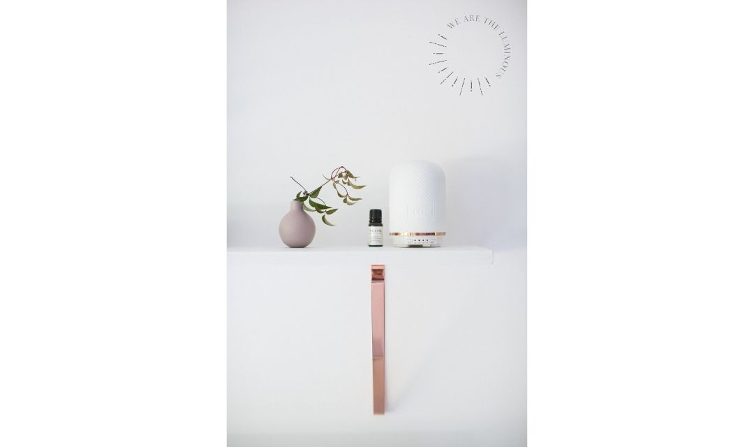 diffuser and flowers on shelf