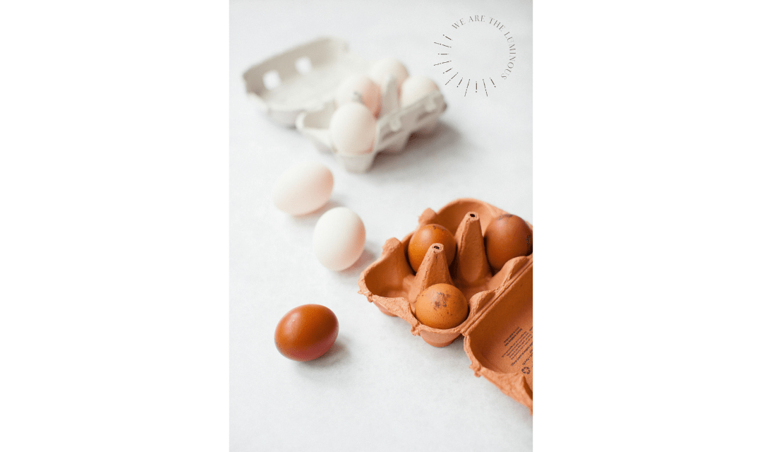 white and brow eggs stock photos