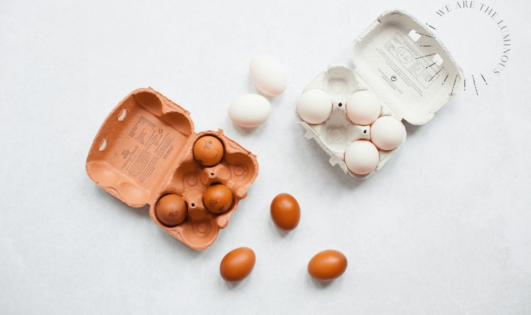white and brown eggs stock photo