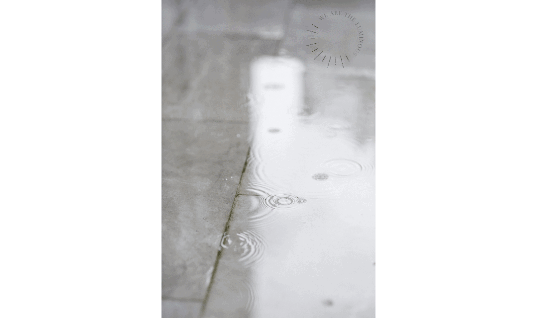 raindrops in puddle stock photography
