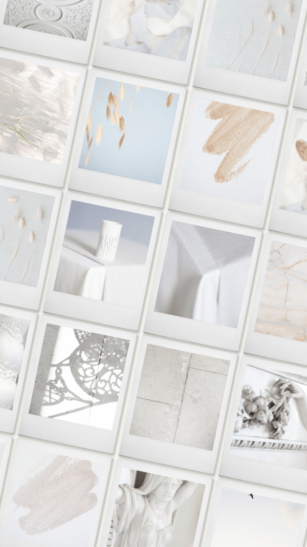Artistic neutrals styled stock photography