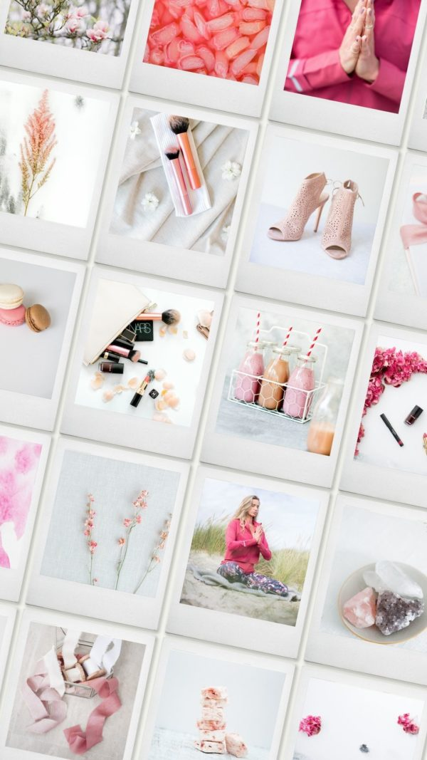 pink stock photography