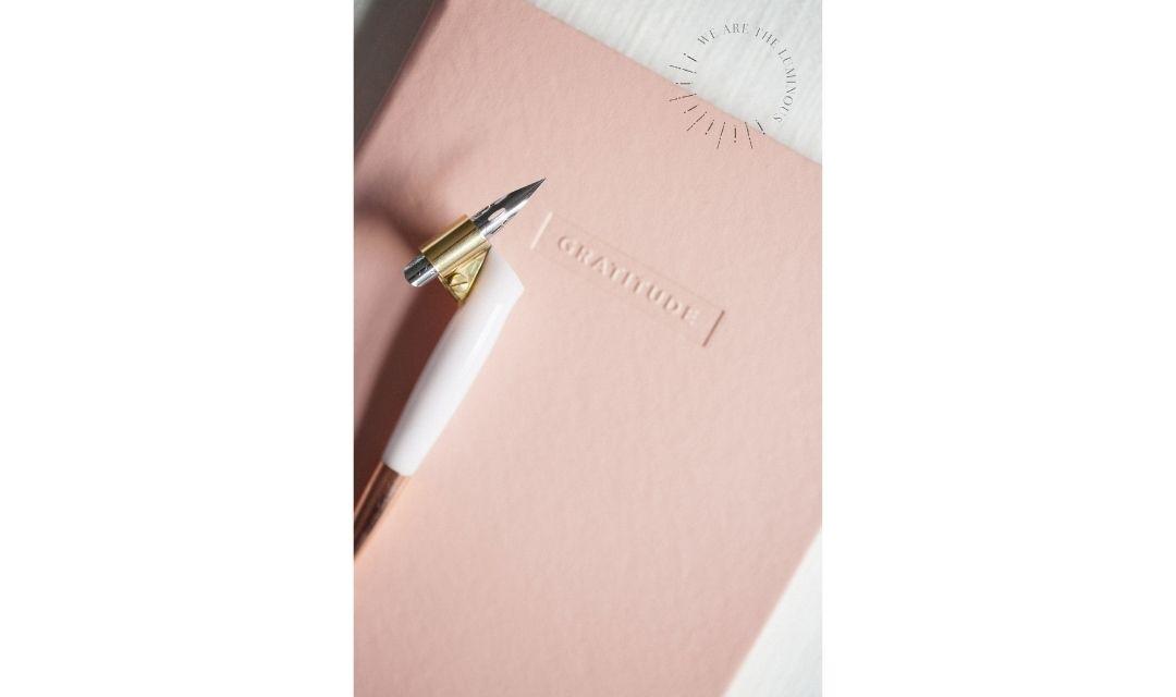 pink gratitude notebook